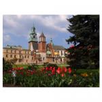Zamek Królewski na Wawelu zaprasza