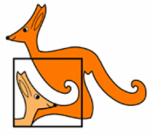 Wyróżnieni w Kangurze Matematycznym